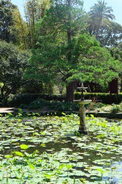 so pond