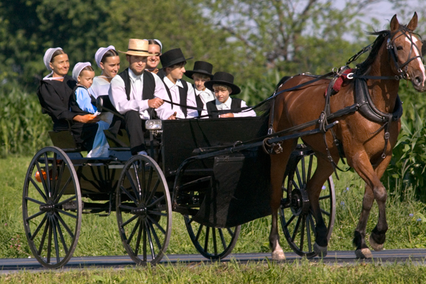 amish-family-in-buggy8